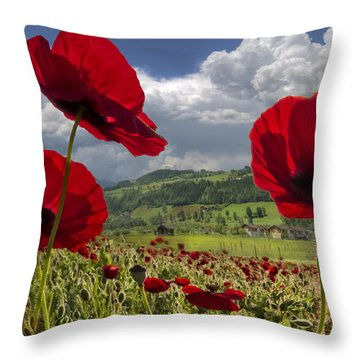 Red White And Blue Throw Pillow by Debra and Dave Vanderlaan