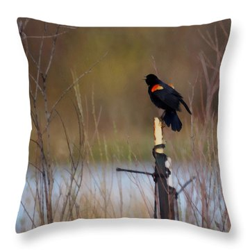 Red Winged Blackbird 2 Throw Pillow by Ernie Echols