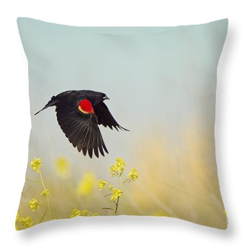 Red Winged Blackbird In Flight Throw Pillow