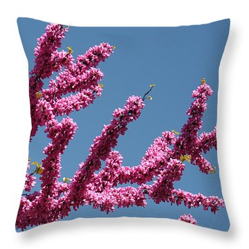 Redbud Against Blue Sky Throw Pillow