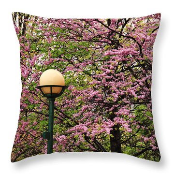 Redbud And Lamp Throw Pillow