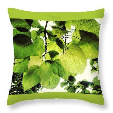 Catalpa Branch Throw Pillow