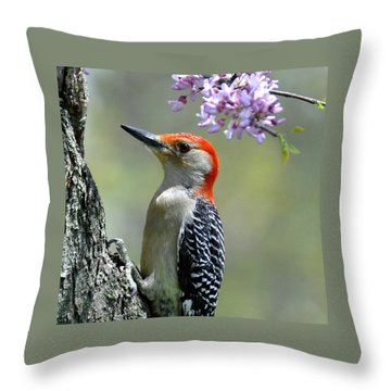 Redbud With Woodpecker Throw Pillow