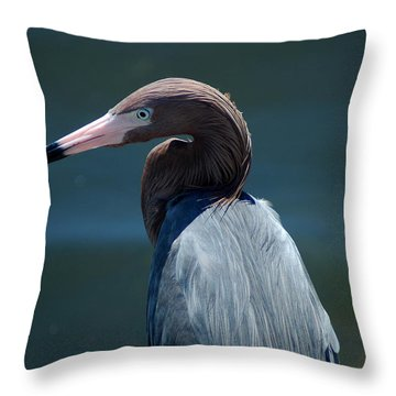 Reddish Egret 3 Throw Pillow
