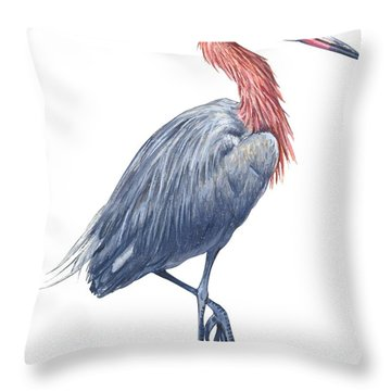 Reddish Egret Throw Pillow by Anonymous