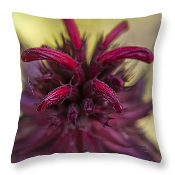 Reddish Throw Pillow