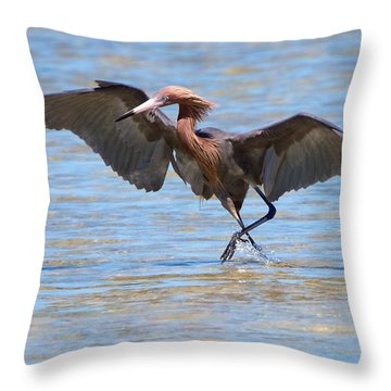 Reddish Tent Throw Pillow