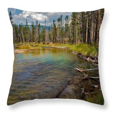 Redfish Lake Creek Throw Pillow by Robert Bales
