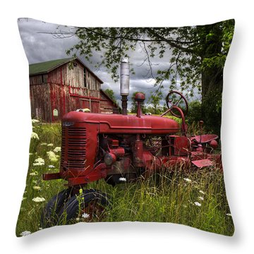Reds In The Pasture Throw Pillow