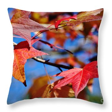 Reds Of Autumn Throw Pillow by Kaye Menner