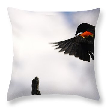 Redwing Throw Pillow