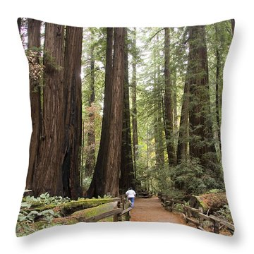 Redwood Trees Throw Pillow