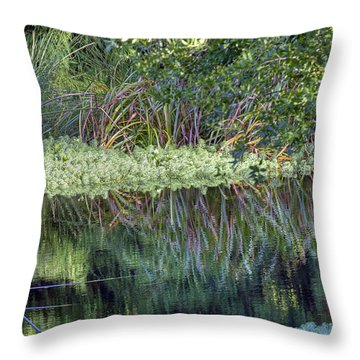 Throw Pillow featuring the photograph Reed Reflections by Kate Brown