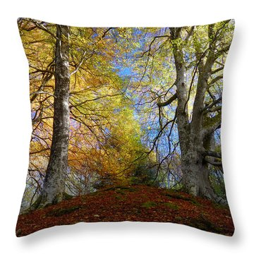 Reelig Forest  Throw Pillow