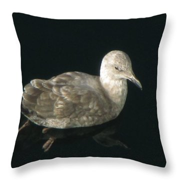 Refections Of A Gull Throw Pillow