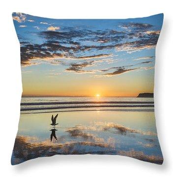 Reflected Flight Throw Pillow