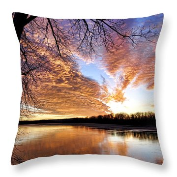 Reflected Glory Throw Pillow by Cricket Hackmann