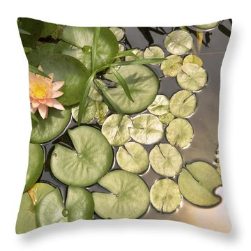 Reflected Light Upon Flowering Water Lilies Throw Pillow by Jason Politte