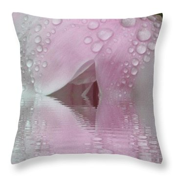 Reflected Tears Throw Pillow
