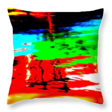 Throw Pillow featuring the photograph Reflecting by Aurelio Zucco
