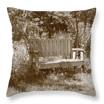 Reflecting Bench Throw Pillow