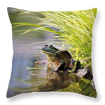 Reflecting Throw Pillow by Katherine White