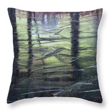 Reflecting On Transitions Throw Pillow by Mary Amerman
