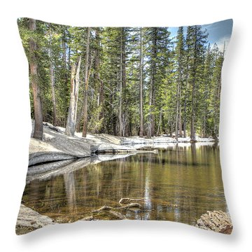 reflecting pond 2 Carson Spur Throw Pillow