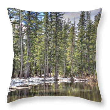reflecting pond 4 Carson Spur Throw Pillow