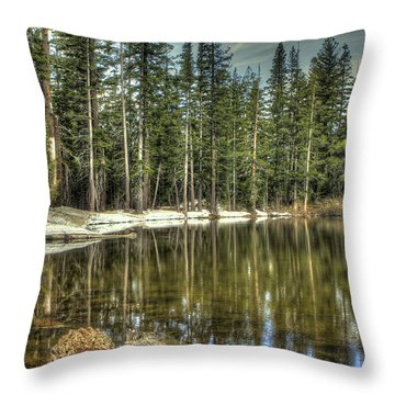 reflecting pond Carson Spur Throw Pillow