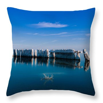 Reflection At Salton Sea Throw Pillow