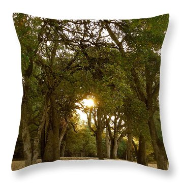 Reflection At Sunrise Throw Pillow