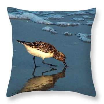 Reflection At Sunset Throw Pillow