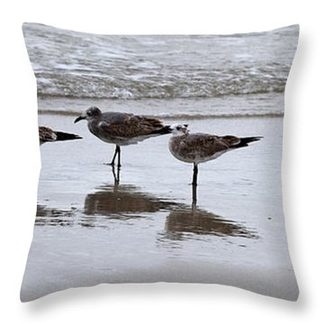Reflection At The Beach Throw Pillow