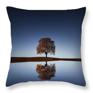 Reflection Throw Pillow by Bess Hamiti