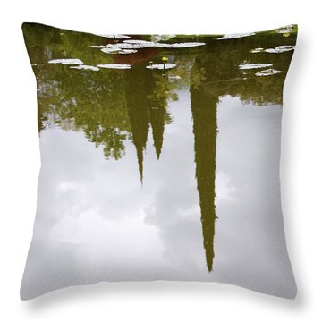 Throw Pillow featuring the photograph Reflection by Colleen Williams