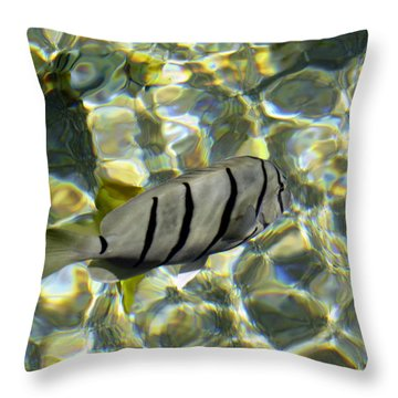 Reflection Fish Throw Pillow