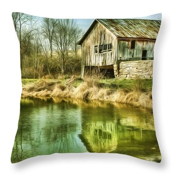 Reflection II Throw Pillow