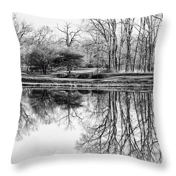 Reflection In Black And White Throw Pillow by Julie Palencia