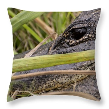 Reflection In His Eyes Throw Pillow by Penny Lisowski