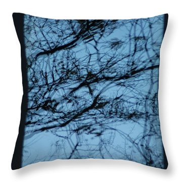 Reflection Throw Pillow by Joseph Yarbrough