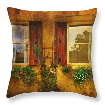 Throw Pillow featuring the photograph Reflection by Kandy Hurley