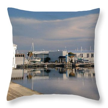 Throw Pillow featuring the photograph Reflection by Leticia Latocki