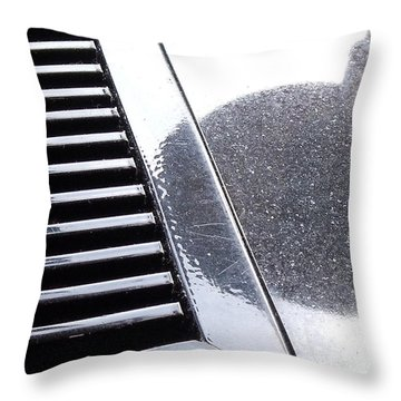Throw Pillow featuring the photograph Reflection by Lyric Lucas