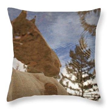 Upon Reflection Throw Pillow