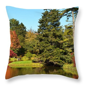 Reflection Of Fall Colors Throw Pillow