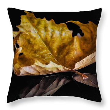 Reflection Of Fall Throw Pillow by Yvon van der Wijk