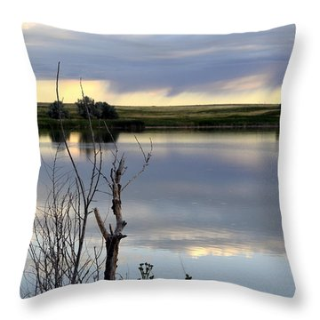 Throw Pillow featuring the photograph Reflection Of Morning Sky by Clarice  Lakota