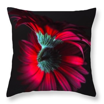 Reflection Of The Gerbera Throw Pillow