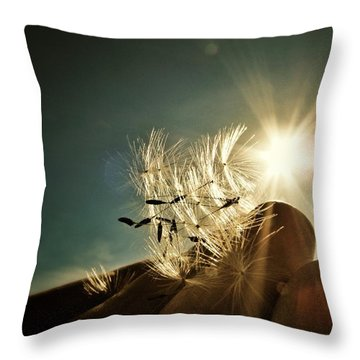 Reflection Of The Sun Throw Pillow by Marianna Mills